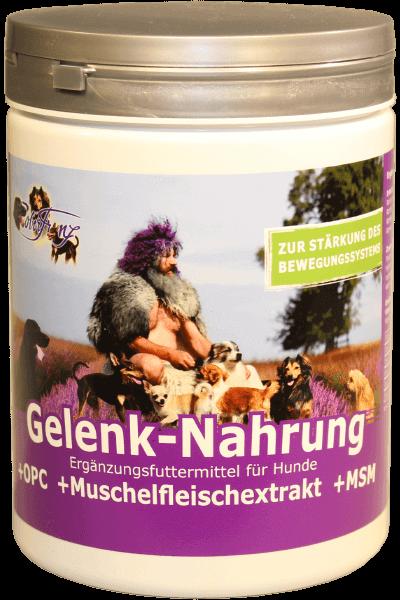 Gelenk-Nahrung (Robert Franz)